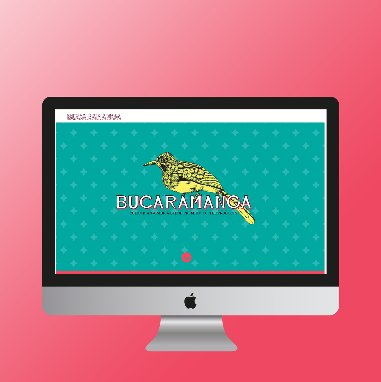 Bucaramanga Coffee Site Mockup